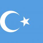 dogu-turkistan-bayragi