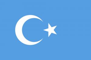doğu türkistan bayrağı