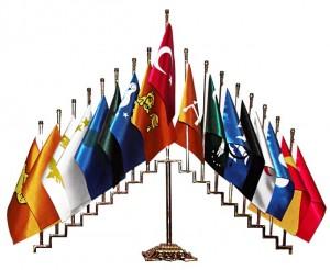 pirinç 17 türk devleti