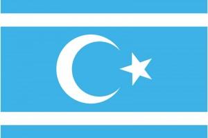 irak-turkmen-bayragi