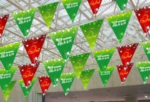 üçgen bayrak